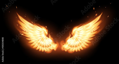 Foto  Wings in flame