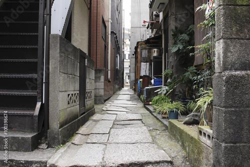 Back alley of Kagurazaka in Tokyo