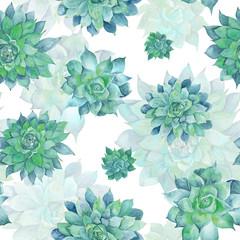 FototapetaWatercolor Turquoise Succulent Pattern