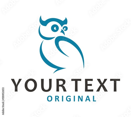 Photo Stands Owls cartoon owl blue abstract