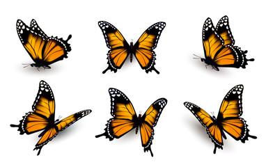 Postavljeno šest leptira. Vektor.
