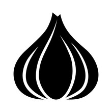 Garlic Bulb / Allium Sativum Flat Icon For Food Apps And Websites