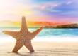 Starfish on the summer beach.