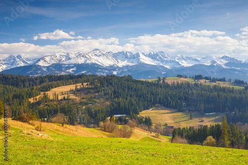Fototapeta Panorama of the High Tatra Mountains, Gliczarow, Poland obraz na płótnie