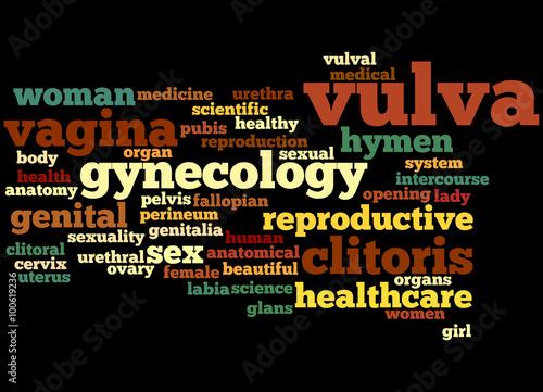 Fotografie, Obraz  Vulva, word cloud concept 6