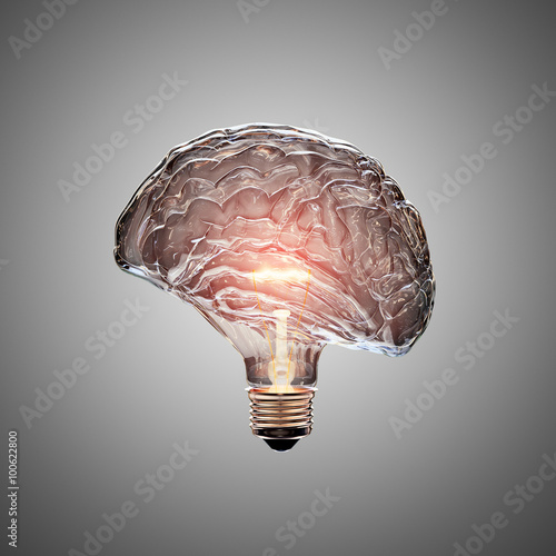 Photo  Light Bulb Brain