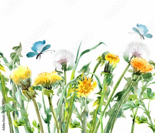 mlecze-zolte-kwiaty-z-motylami-akwarela-bukiet-kwiatowy-tlo-kwiatowy-kartka-urodzinowa-szablon-wektora