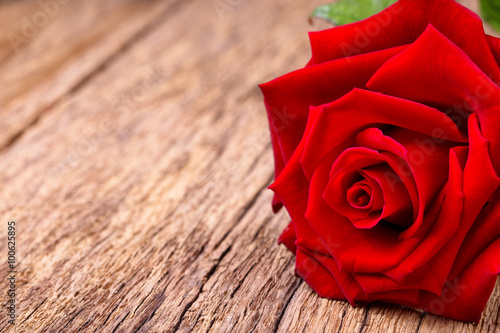 Foto  Red rose on rustic wooden background