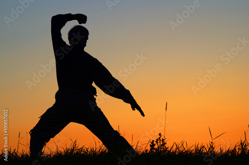 Deurstickers Vechtsport Man practicing karate on the grassy horizon after sunset. Art of self-defense. Silhouette against a bright orange sky.
