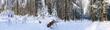 Winterlandschaft mit Langlauf Loipe