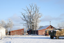Frosty Winter Sunset On A Farm With Blue Sky,2015.