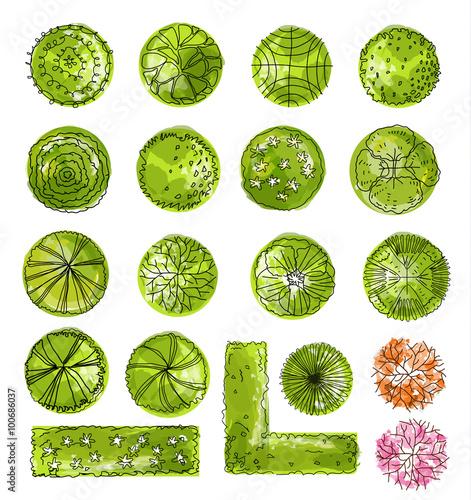 Fotobehang Wit a set of treetop symbols, for architectural or landscape design.