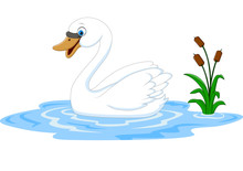 Cartoon Beauty Swan Floats On ...