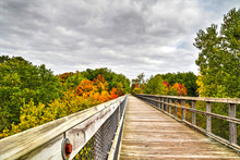 Autumn Walk. A Walk Along A Co...