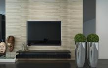 Wall Mounted TV In A Modern Li...