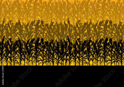Corn field abstract rural autumn biomass biofuel vector Canvas Print