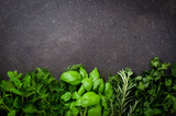 Fresh herbs on dark background
