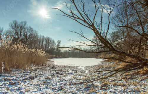 Photo  Winterlandschaft