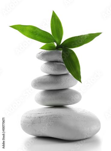 szarosc-zdroju-kamienie-i-zielony-kwiat-odosobniony-na-whit