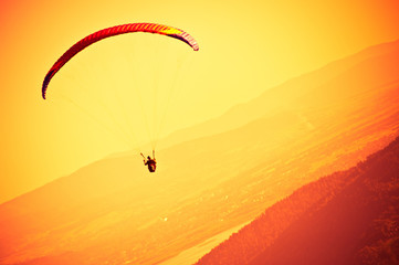 FototapetaParagliders passion is paragliding at the sky