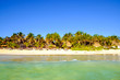 Scenic view of summer beach landscape with palm trees