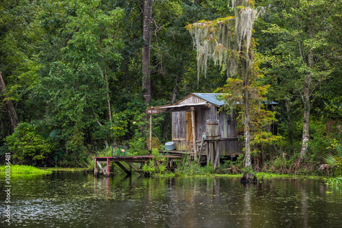 Fotografie, Obraz  Old house in a swamp in New Orleans