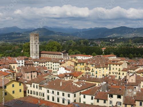 Fototapety, obrazy: Blick vom Torre Guinigi über Lucca