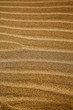 in lanzarote spain texture abstract dry sand and the beach