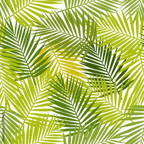 Ingelijste posters Tropische Bladeren Palm leaf silhouettes seamless pattern. Vector illustration. Tropical leaves.