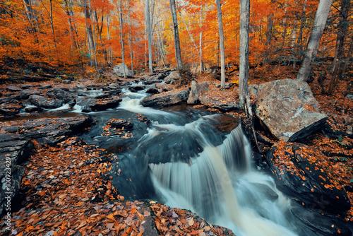 Staande foto Watervallen Autumn waterfalls