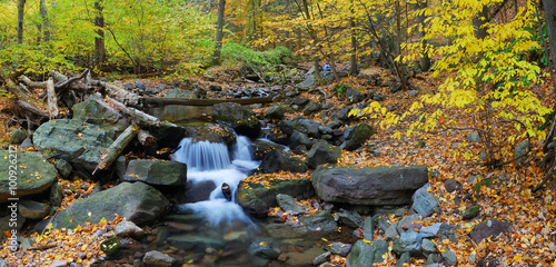 Canvas Print Autumn creek panorama