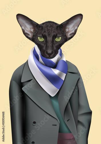 czarnego-kota-chlopiec-ubieral