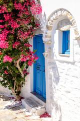 Fototapeta Architektura Colorful doors and flowers in white mediterranean street, Amorgo