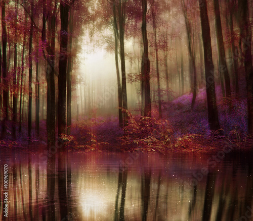 Wall Murals Photo of the day Fantasy autumn forest