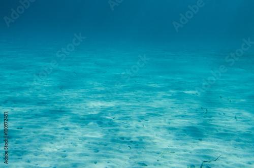 Stampa su Tela Ocean Floor underwater