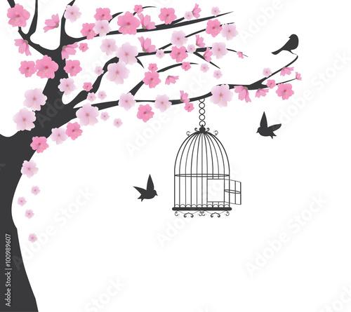 klatka-dla-ptakow
