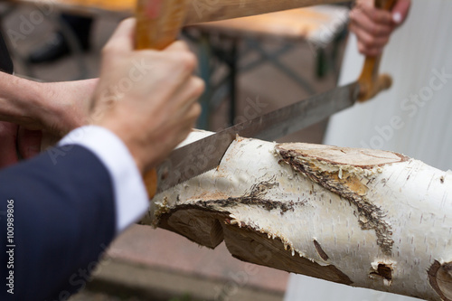 Valokuva  Closeup of a birch tree log beeing sawn by someone dressed in a suit and dress s