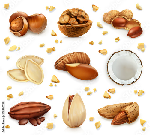 Nuts in the shell, vector icon set Wall mural