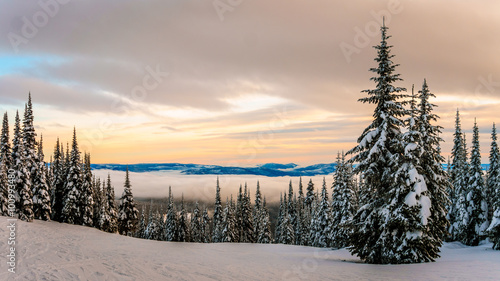 Photo  Sunset over the ski hills at Sun Peaks village with trees covered in snow in the