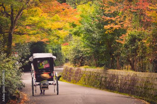 Fototapeta Japanese girls on rickshaw