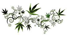 Marijuana Cannabis Leaf Symbol Background Vector Illustration