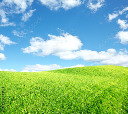 Poster Lime groen Beautiful landscape background.