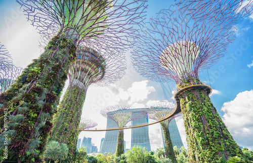 Photo  Garden by the bay and Marina bay sands hotel  at Singapore on the blue sky background