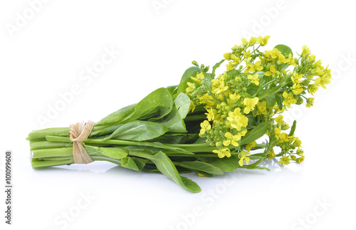 Wall Murals Lily of the valley Chinese Cabbage isolated on white background