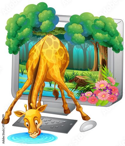Żyrafa wychodzi z ekrany monitora