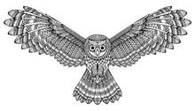 Vector Hand Drawn Flying Owl. Black And White Zentangle Art