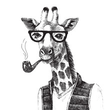 Hand Drawn Illustration Of Giraffe Hipster