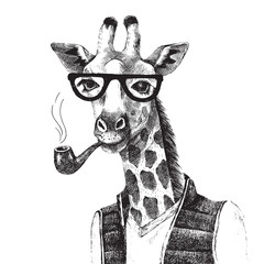 FototapetaHand drawn Illustration of giraffe hipster