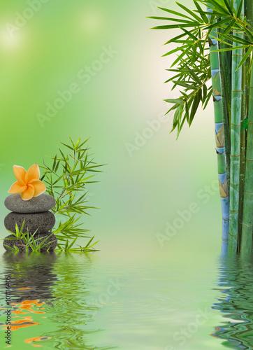composition aquatique relaxation massage zen  - 101116405