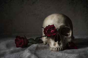 Still life photography with human skull and roses